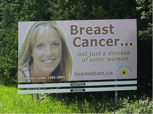 Team Shan billboard